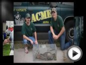 ACME Animal & Pest Control in Norfolk, VA