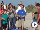 SeaWorld Orlando Releases Green Turtle In Cocoa Beach, Florida